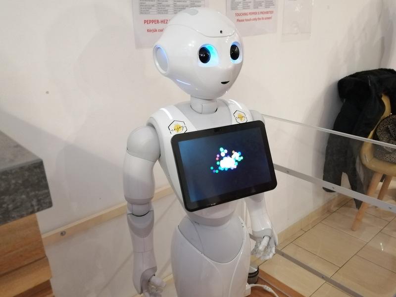 Budimpešta roboti
