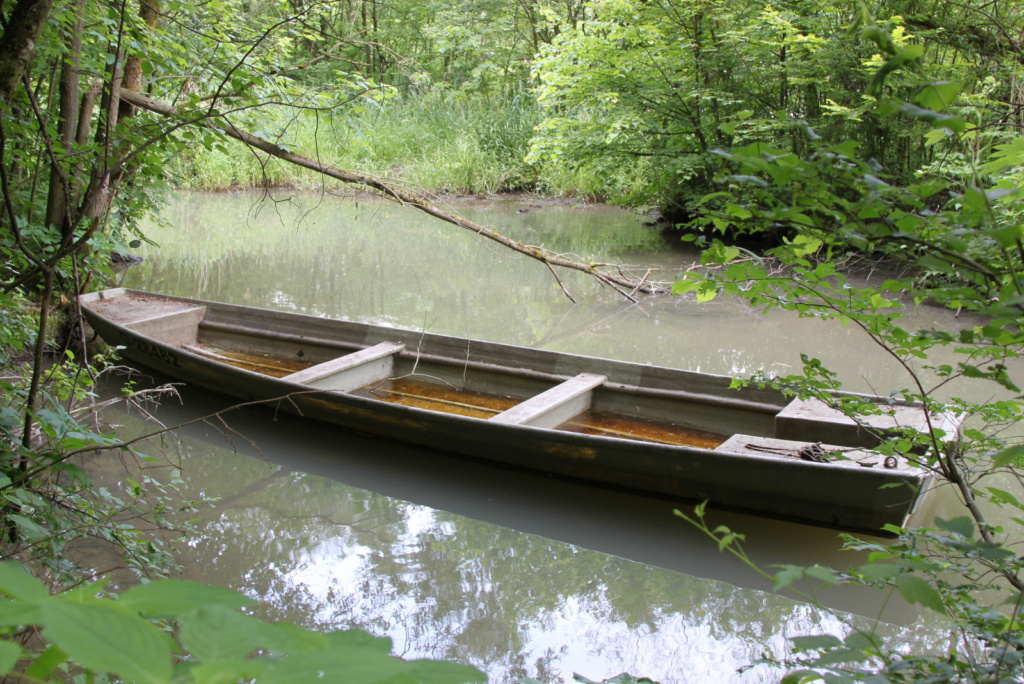 Kolesarjenje ob Donavi razgledi