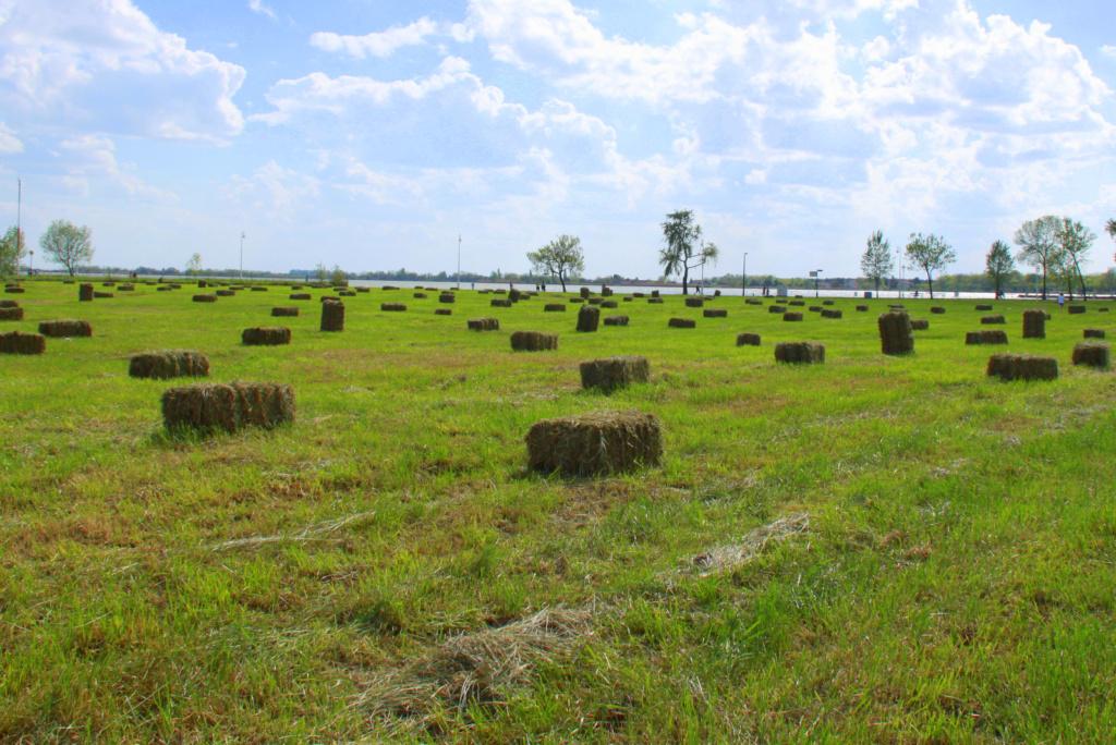 Kmetijstvo je v Vojvodini še vedno zelo pomembno