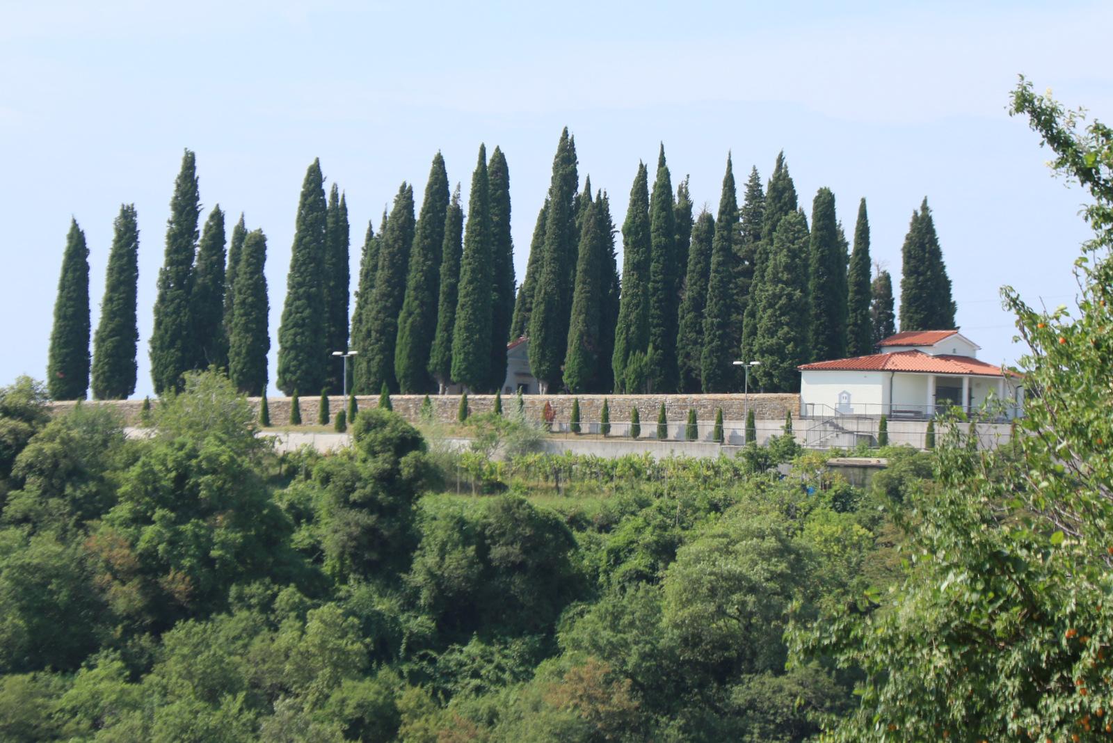 Pokopališče v Padni.