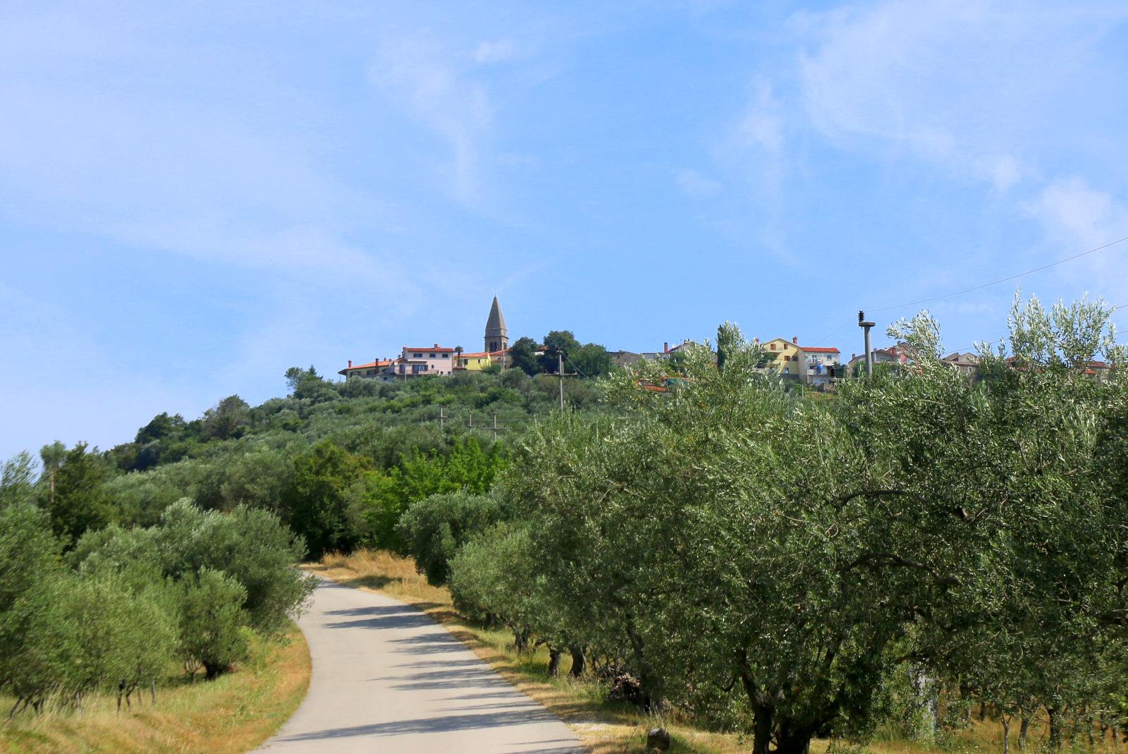 Panorama vasi Padna.