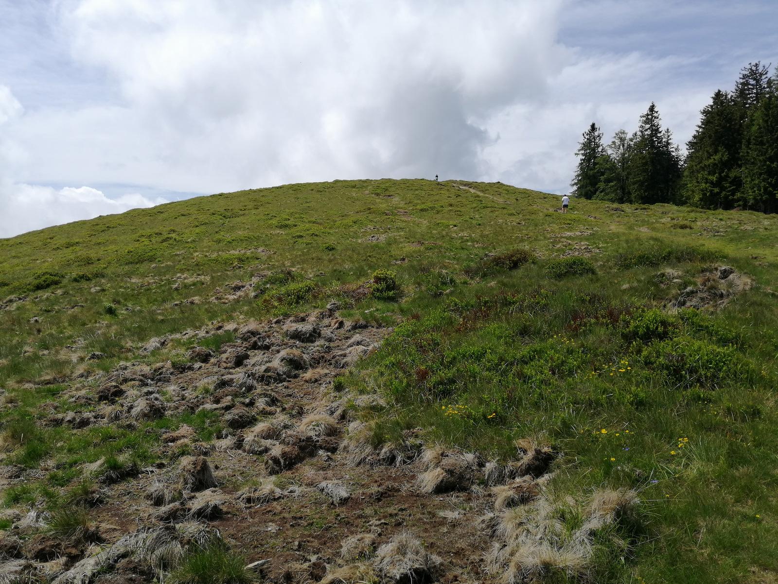 Pot do Kašne planine
