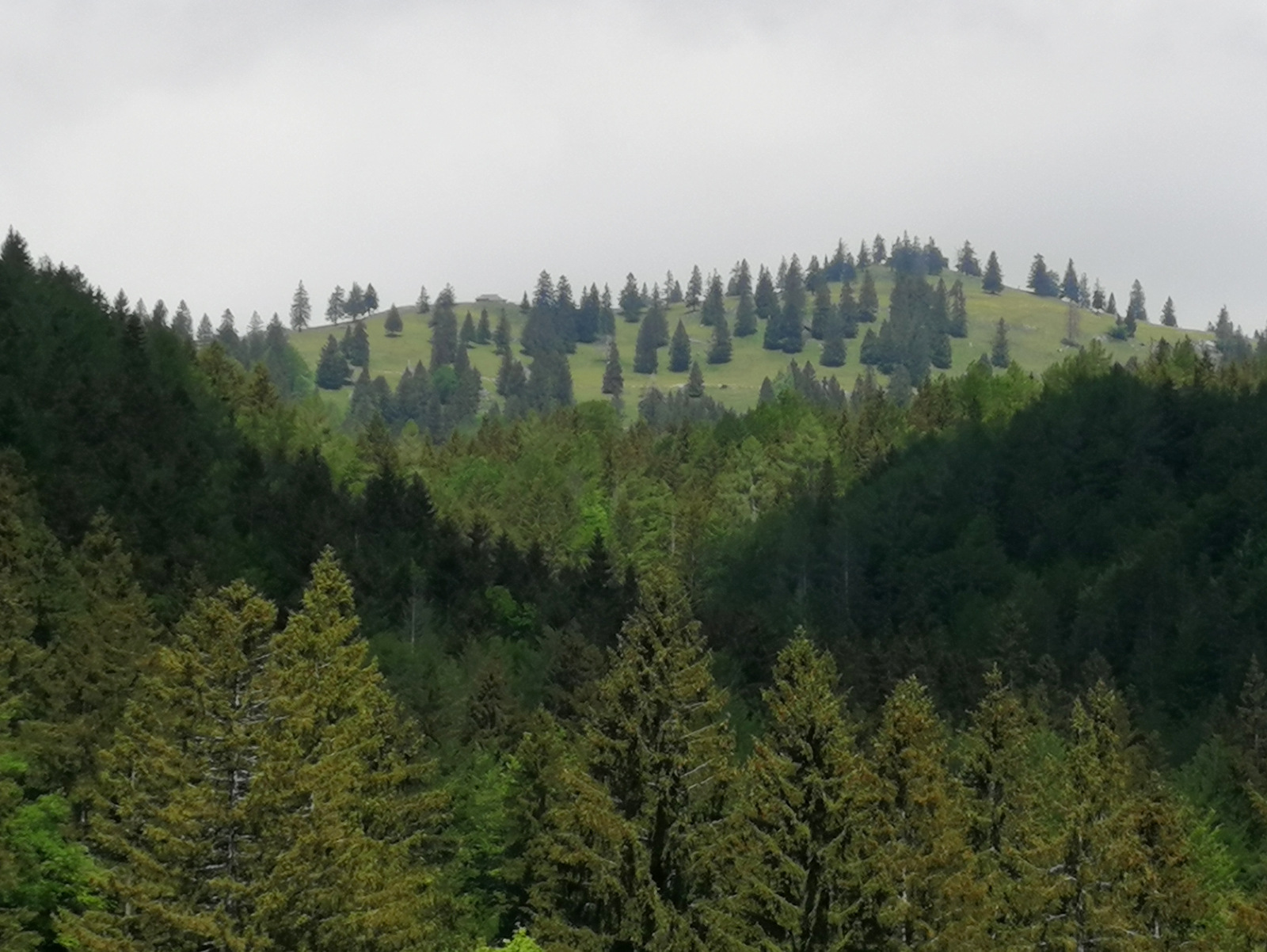 S poti na Kašno planino se odpira lep razgled na Veliko in Malo planino