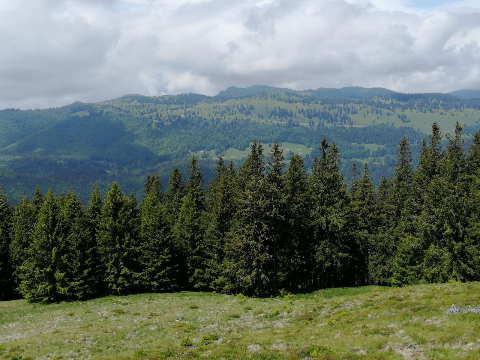 Razgled z Vrha Kašne planine