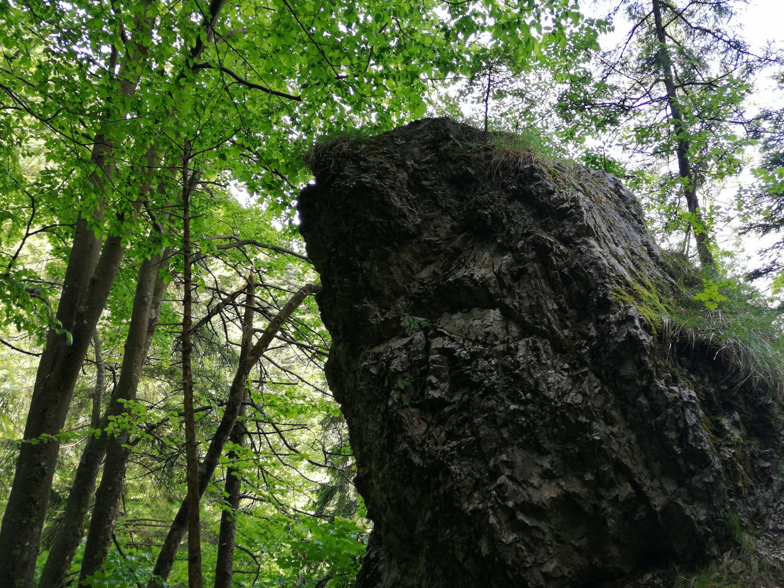 Repov Slap v Podvolovljeku