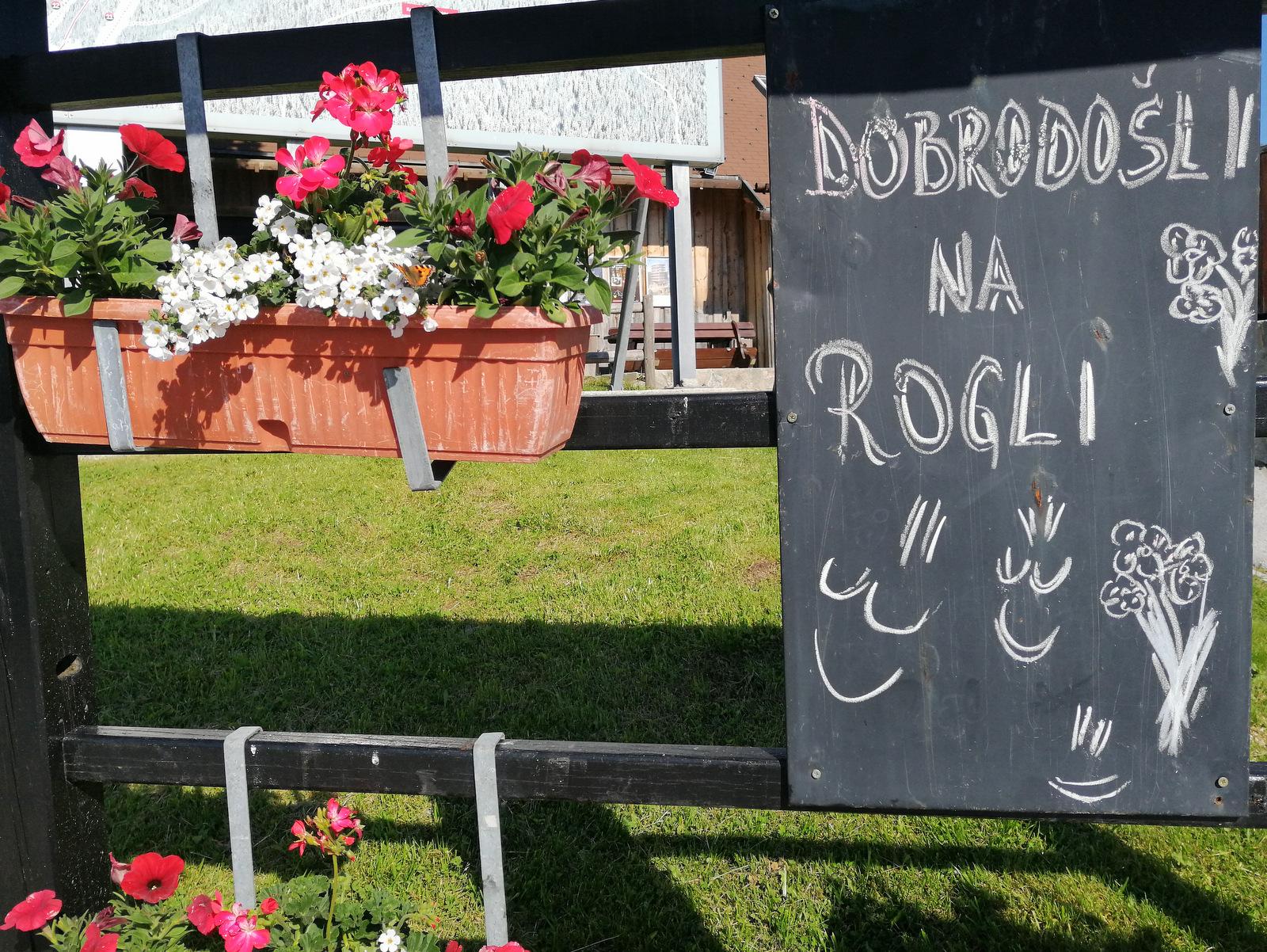 Dobrodošli na Rogli
