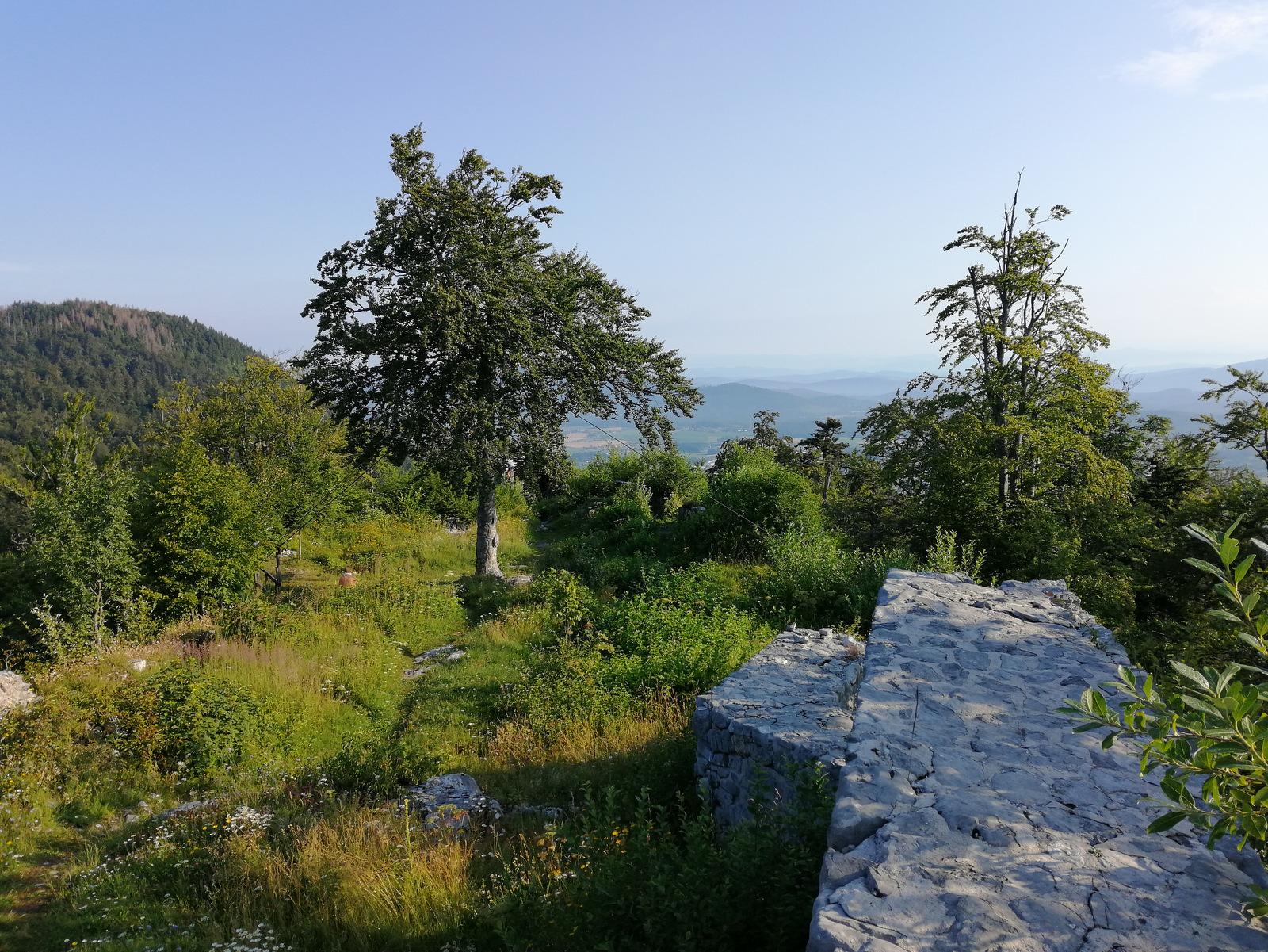 Grad Fridrihštajn, vrh