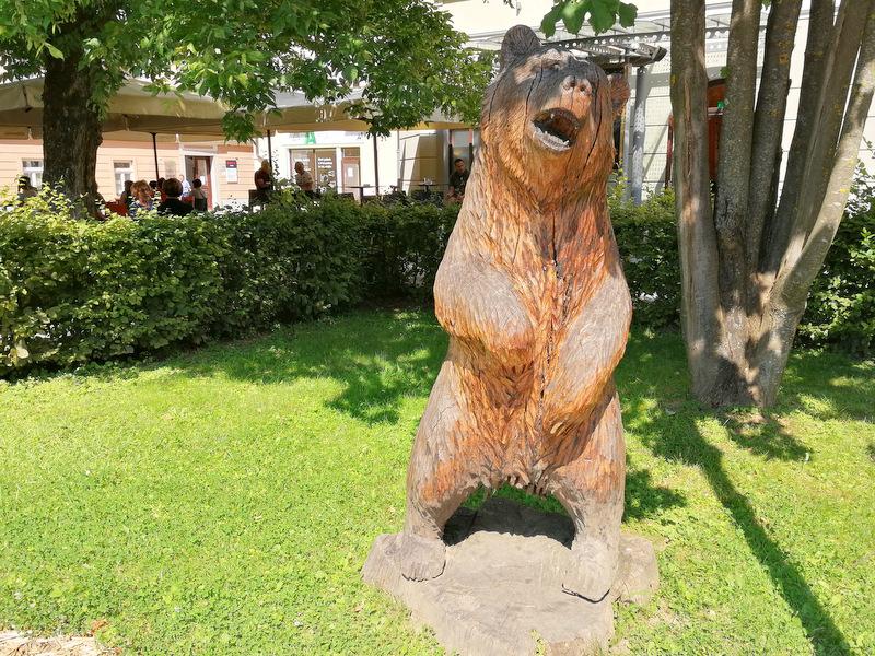 Kip medveda v Kočevju