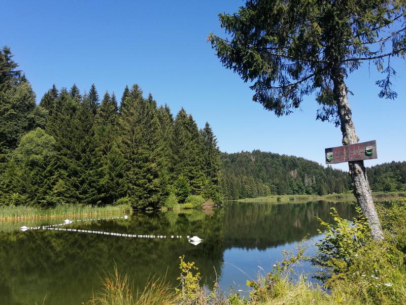 Reško jezero, jezero