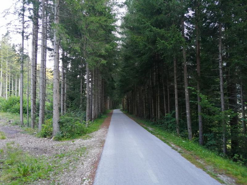 Kolesarska pot Jureta Robiča