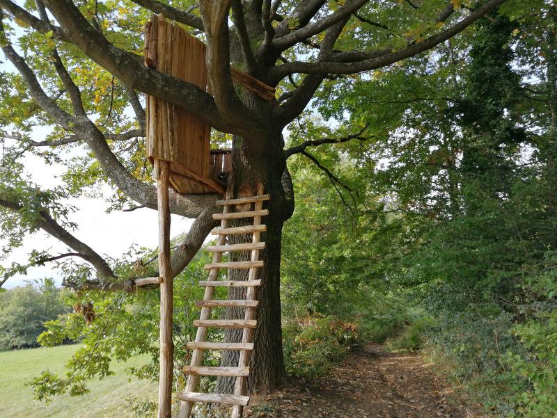 Donačka gora, pot, hišica na drevesu