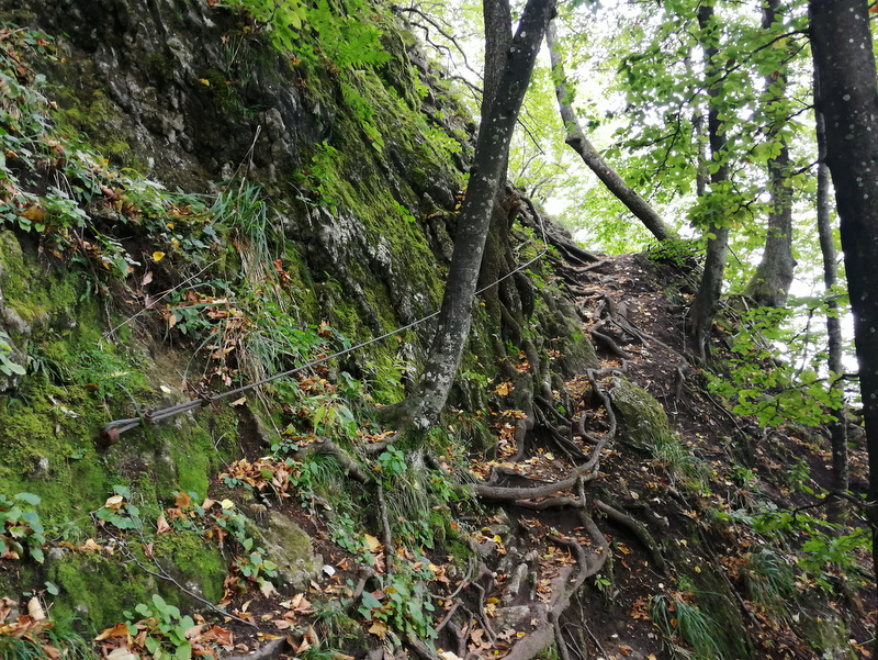 Donačka gora, pot