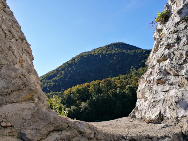 Konjiška gora, razgled