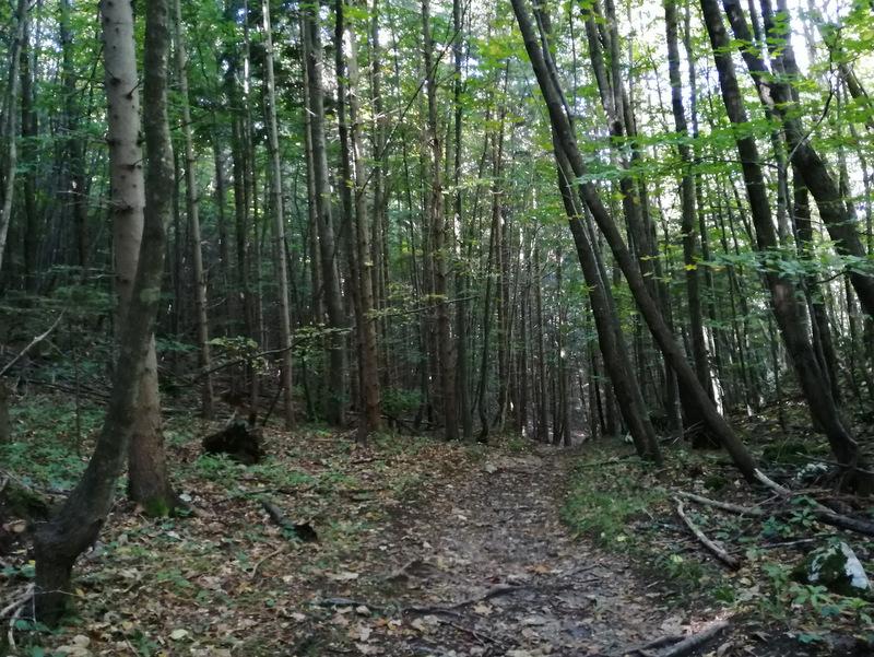 Pot na Stolpnik