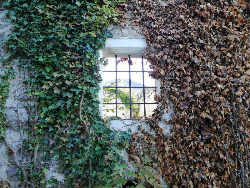 Okno stari grad Konjice