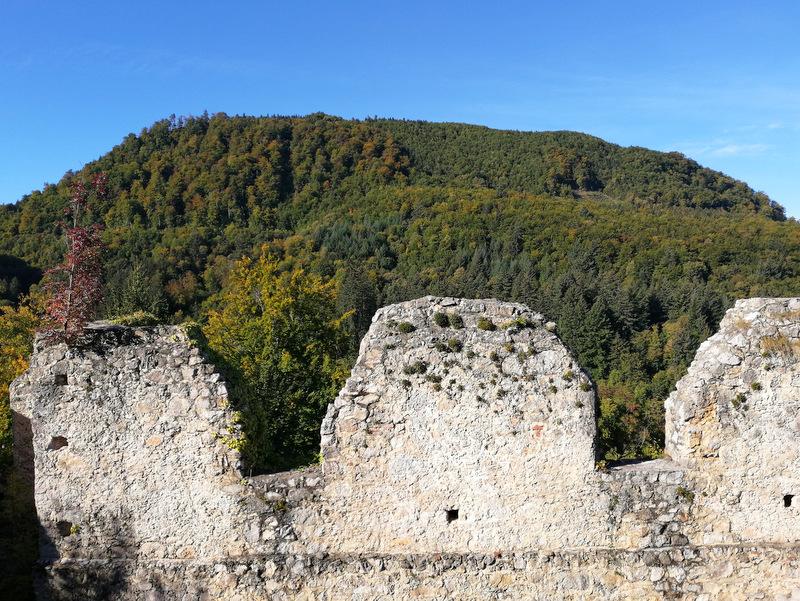 Stolpi starega gradu Konjice