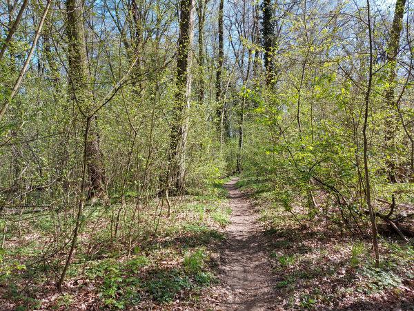 Babji ložič, sprehajalna pot
